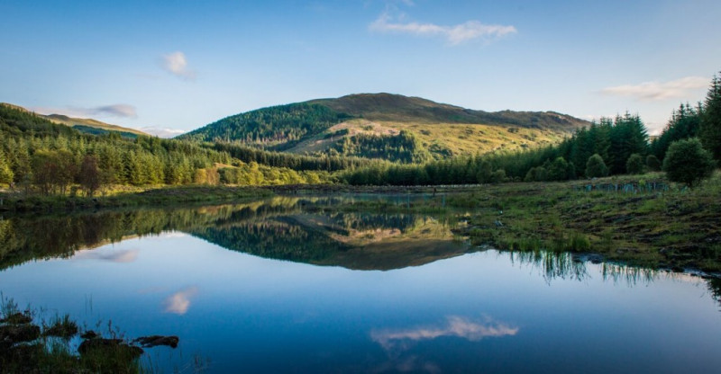 Riseva Naturale di Glencoe Wood, Duror, Appin
